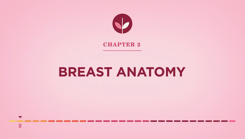 Chapter 2: Breast Cancer